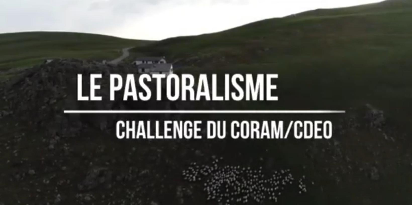 Le pastoralisme – Challenge du CORAM-CDEO
